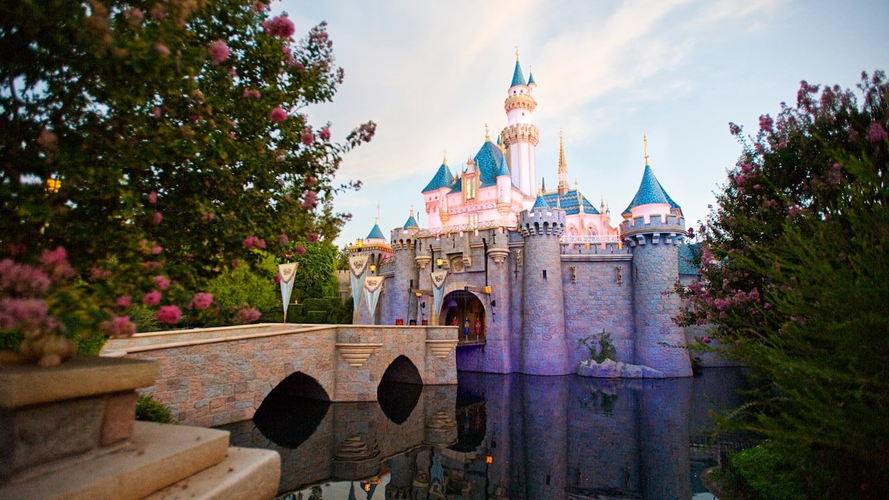 Take a tour of our 2 magical Theme Parks, Downtown Disney District, 3 Disneyland Resort hotels and an entire world of magic!