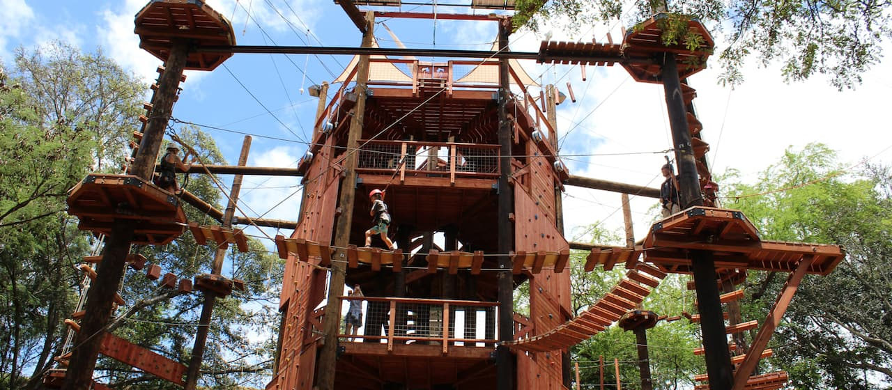 A child wearing a helmet and a harness walks across a rope bridge at Coral Crater Adventure Park