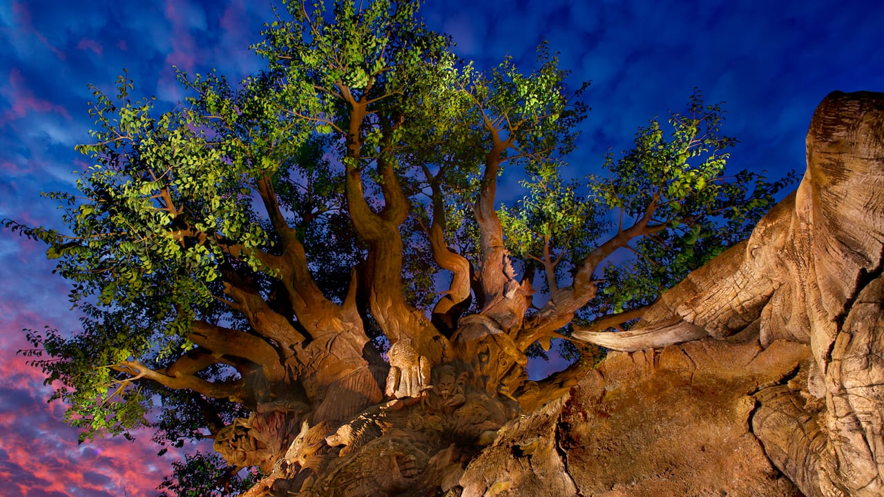 The Tree of Life, in which the image of dozens of animal species appear as part of the tree