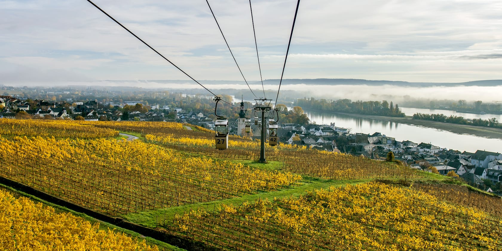 A gondola stretches out over a pastoral setting Rüdesheim