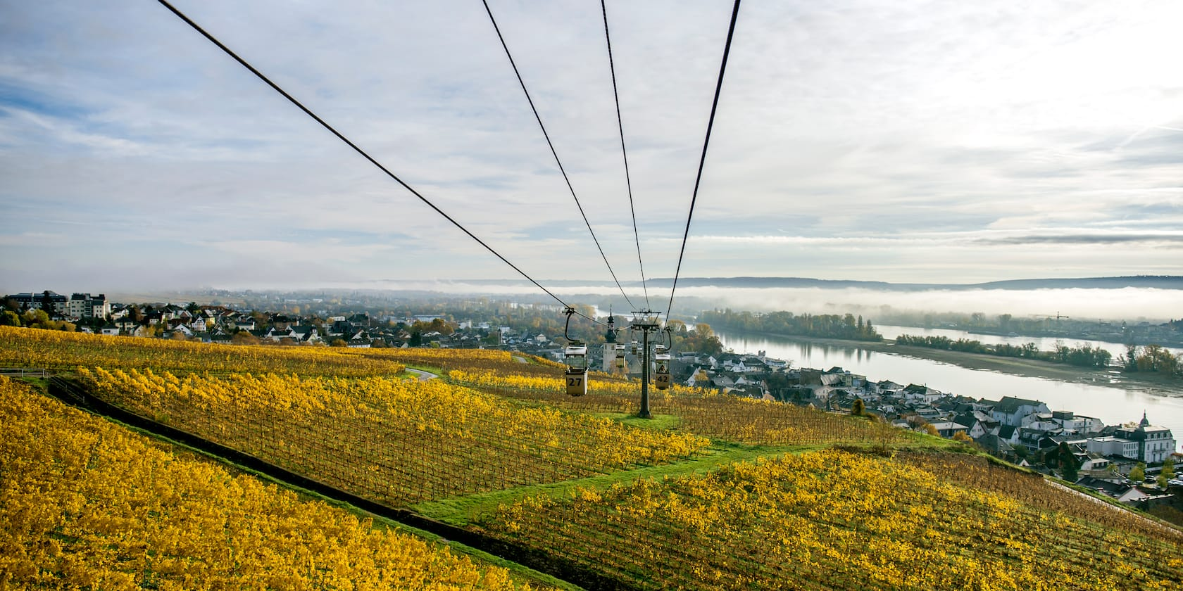 A gondola rides over a large field with the Rhine River and the town of Rüdesheim in the distance