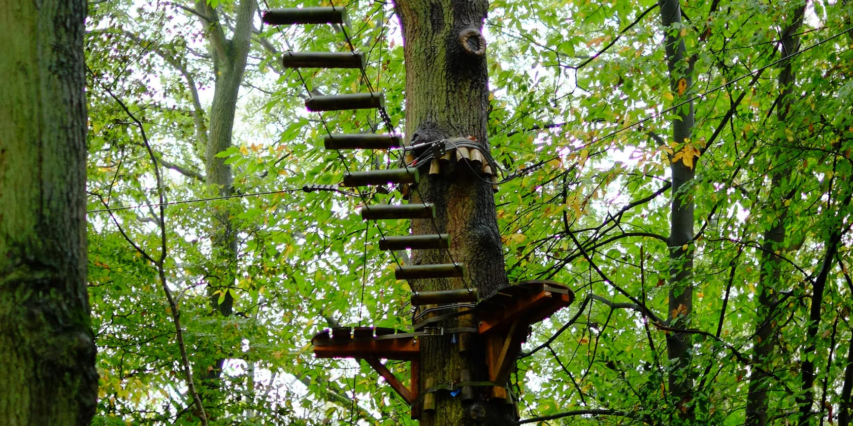 A ropes course bridge high in the tree tops of a tree climbing park in Rouen, France