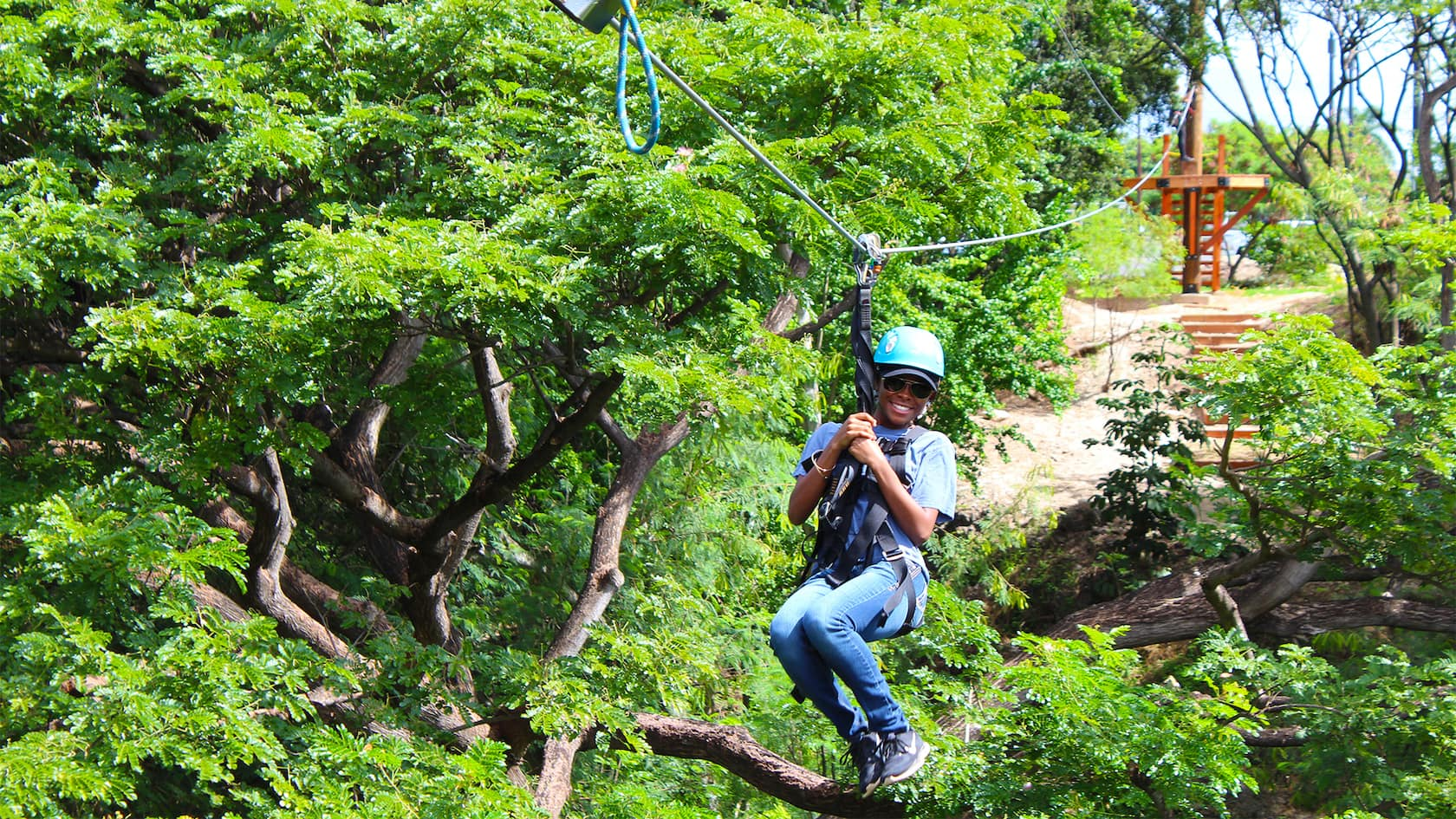 A boy wearing a helmet and harness rides a zipline through trees