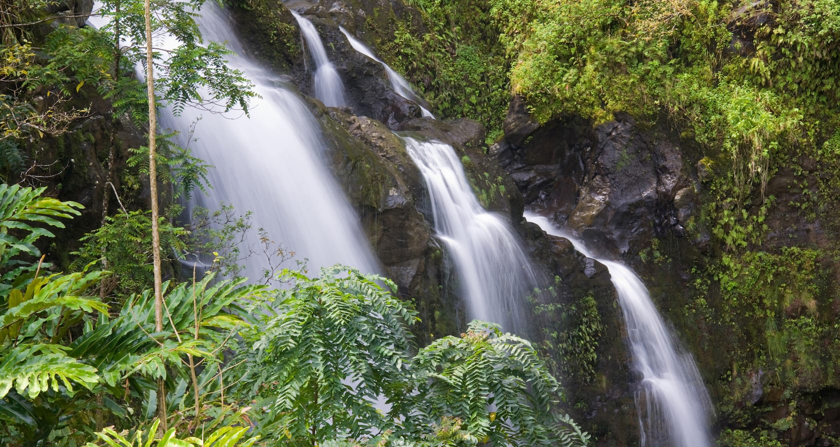 Rushing water cascades down a steep tropical hillside