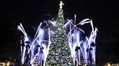 クリスマスツリーとその後ろで炸裂する花火