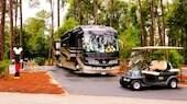 ディズニー・フォート・ウィルダネス・リゾート ‐ キャンプサイトの木々が並ぶ通りにあるバスや小型車