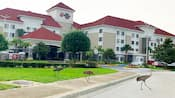 Best Western Plus – Kissimmee – Lake Buena Vista South Inn & Suites