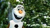 Olaf stands in front of trees