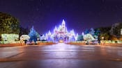 Learn more about Holidays at Walt Disney World Resort