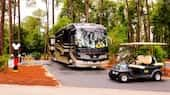 A bus and small car on a road lined with trees at The Campsites at Disney's Fort Wilderness Resort