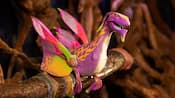 The Night Blossom, a colorful toy banshee, perched on a tree branch