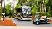 Un vehículo recreativo y un carrito de golf estacionados en el bosque