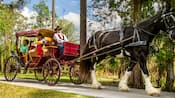A family rides in a horse drawn carriage on a path lined with many trees