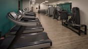A fitness center featuring treadmills, elliptical machines and weight lifting equipment