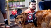 A Golden Retriever dog wearing a Minnie Mouse ears hat and a harness that says Service Dog stands next to a sitting man
