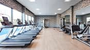 Many treadmills stationed looking out windows along with other exercise machines throughout the facility