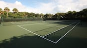 Two hard-court tennis courts bordered by trees