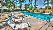 Cuenta con diversos árboles altos que rodean una piscina rectangular, además de reposeras para los huéspedes