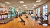 El gimnasio cuenta con una fila de caminadoras, bicicletas de ejercicio, pesas y otro equipo de entrenamiento