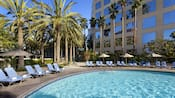 Lounge chairs and multiple varieties of palm trees line the pool at the Hyatt Regency Orange County