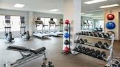 Hotel Amenities gym