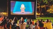 Visitantes sentados na grama assistindo ao filme A Bela e a Fera, à noite