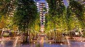 O pátio repleto de árvores da Bay Lake Tower no Disney's Contemporary Resort