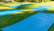 Trois tapis de yoga déroulés sur une pelouse