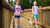 Dos niñas caminan por un puente de madera con un perro pequeño amarrado con una correa