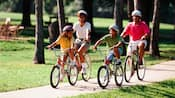 Família de 4 pessoas usando capacetes e andando de bicicleta em um caminho de concreto pelas árvores