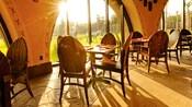 Sunlight washes through the window at Sanaa as 2 zebra roam the savanna outside