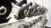 Close-up of free weights on stacked racks
