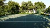 Vista de una cancha de tenis rodeada por árboles
