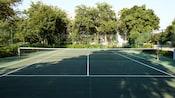 Vue sur un court de tennis bordé d'arbres