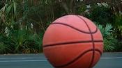 Un ballon de basketball repose sur le terrain