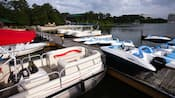 A variety of watercraft docked lakeside