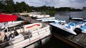 Variedad de embarcaciones amarradas junto al lago