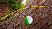 Gros plan d'une canne à pêche avec flotteur posée sur un tronc d'arbre
