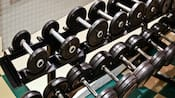 2 rows of barbells of varying weights