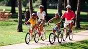Une famille de 4membres portant des casques roule à vélo sur un chemin en béton