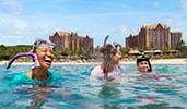 Attendees snorkeling at Disneys Aulani Resort in Hawaii
