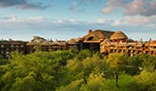 The exterior of Disney's Animal Kingdom Lodge, featuring a large, untamed outback
