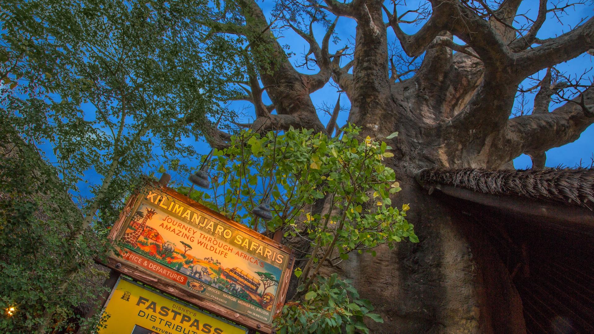 Kilimanjaro Safaris FastPass+