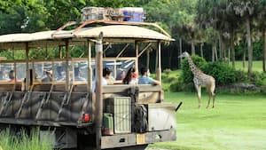 Guests watching a giraffe on the savanna from a vehicle on the Kilimanjaro Safaris attraction