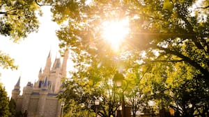 Sunny view of Cinderella's castle through the trees
