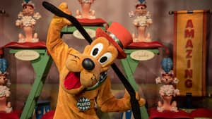 Pluto playfully tugs at his long ears in a room filled with toys