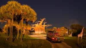 The evening sky reigning high above Kilimanjaro Safaris as Guests enjoy a tour taking place at night