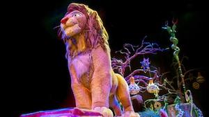 Simba em pose majestosa durante uma apresentação do Festival of the Lion King no Disney's Animal Kingdom Park