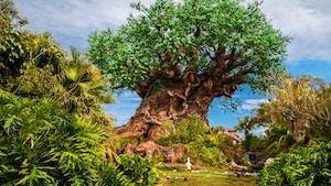 El Tree of Life se mantiene erguido entre la exuberante vegetación en el Parque Temático Disney's Animal Kingdom