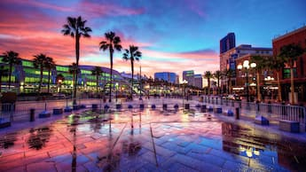 Palm trees and parking barricades in front of a modern looking shopping area at sunset